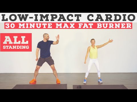 low impact cardio workout for all fitness levels  no