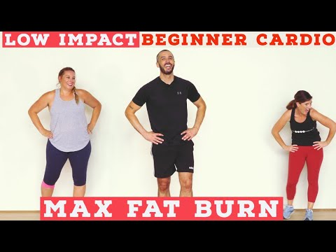 fat burning beginner low impact home cardio workout  all